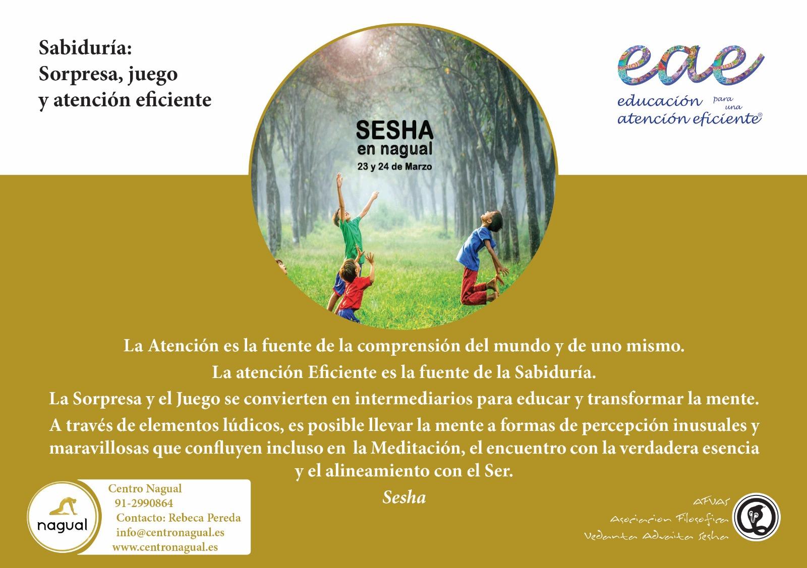 JUEGO, SORPRESA Y ATENCIÓN EFICIENTE Con Sesha